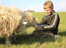 Betere financiële ondersteuning voor zorgboerderijen